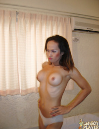 Skinny Asian ladyboy Ann flaunting big tits before jerking off solo