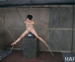 Mia torro has a special love affair with bondage... - part 573